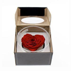 """Rose éternelle coeur rouge """"Rose amore"""""""