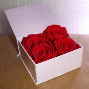 Coffret de 4 roses éternelles rouges