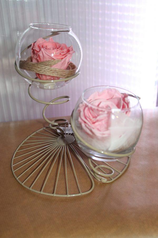 Duo roses éternelles rose éole beige