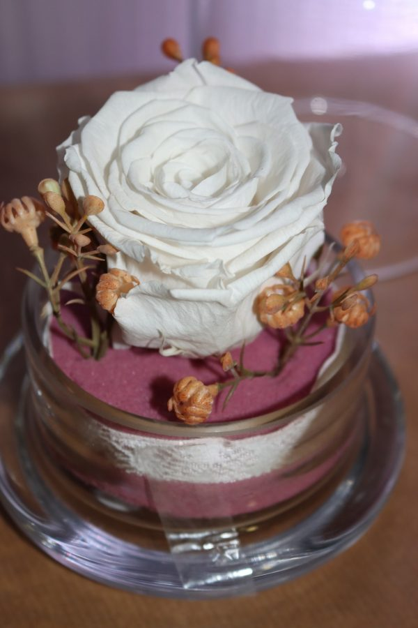 Rose éternelle blanche sous cloche décors rosé