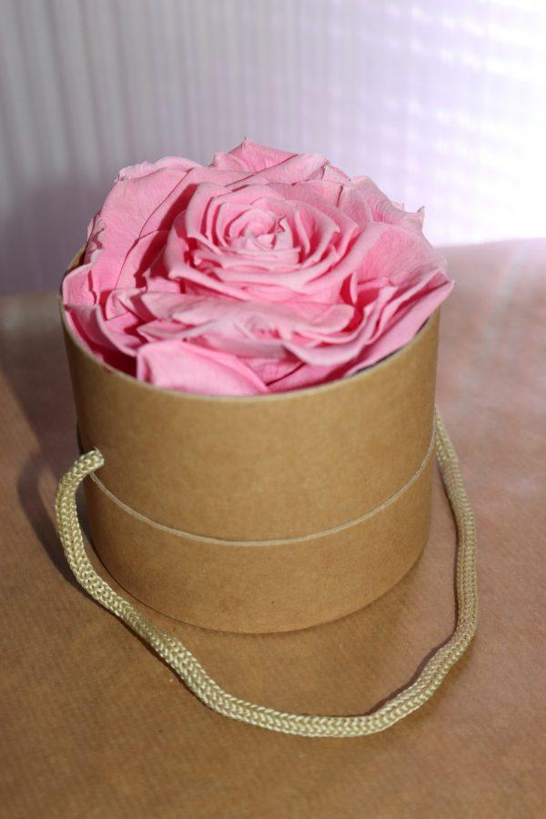 Rose éternelle rose boite à chapeaux mono