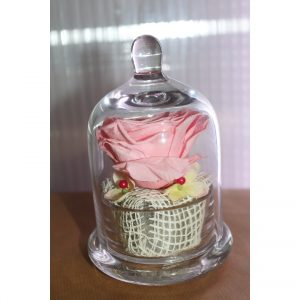 Rose éternelle rose claire sous cloche façon cupcke petit modèle