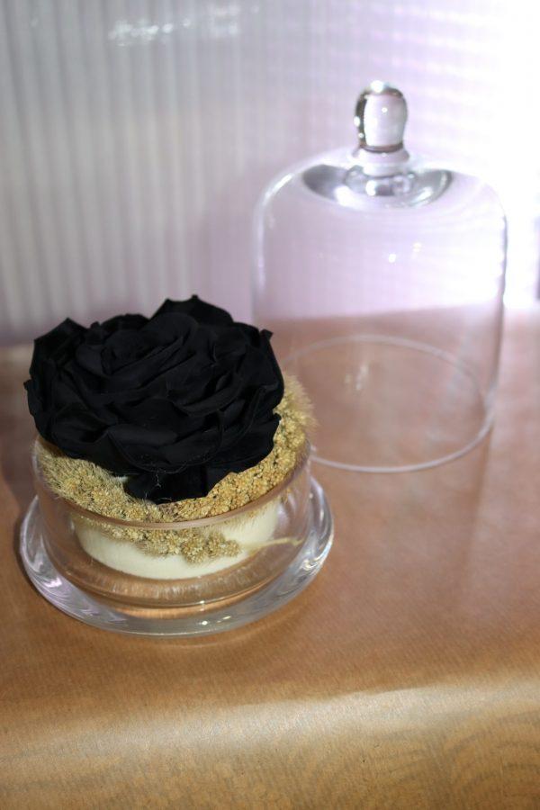 Rose éternelles noir champêtre sous cloche